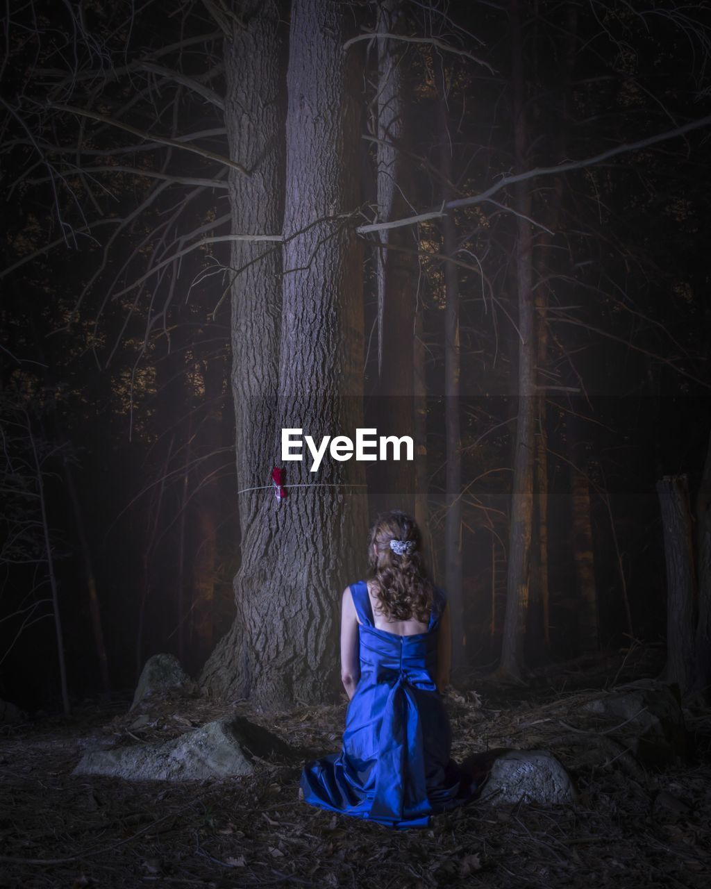 Rear View Of Woman Wearing Blue Dress In Forest At Night