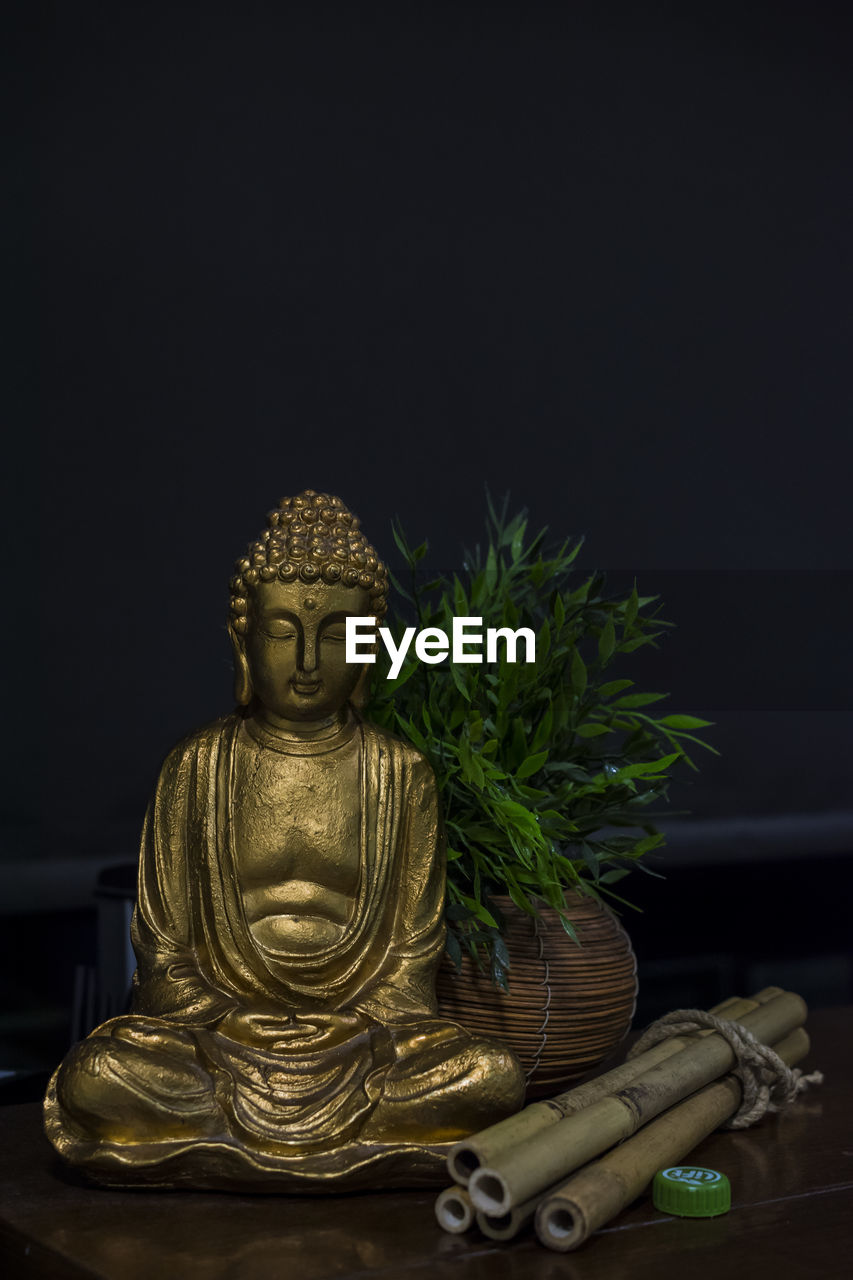 Buddha statue by plant on table