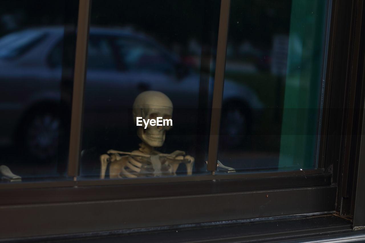 Human Skull Seen Through Glass Window