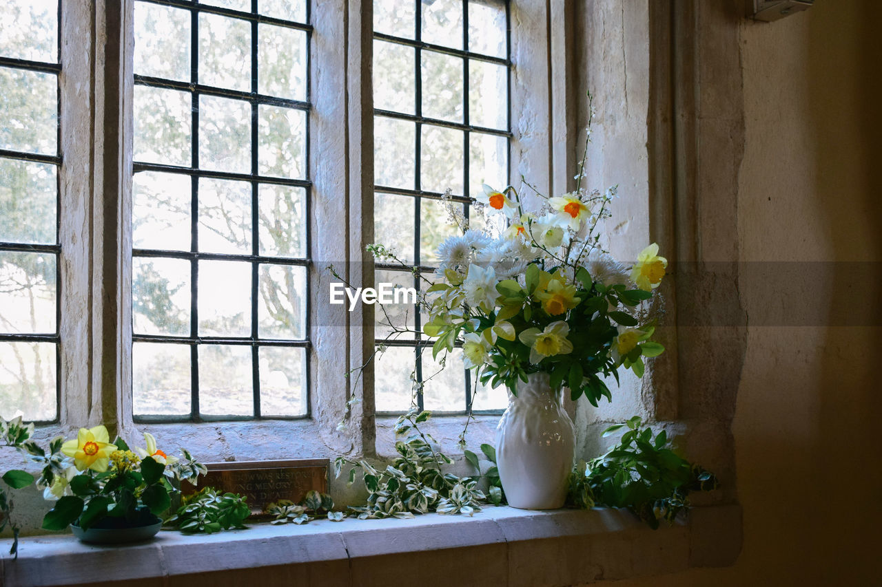 FLOWER VASE ON WINDOW SILL OF POTTED PLANT