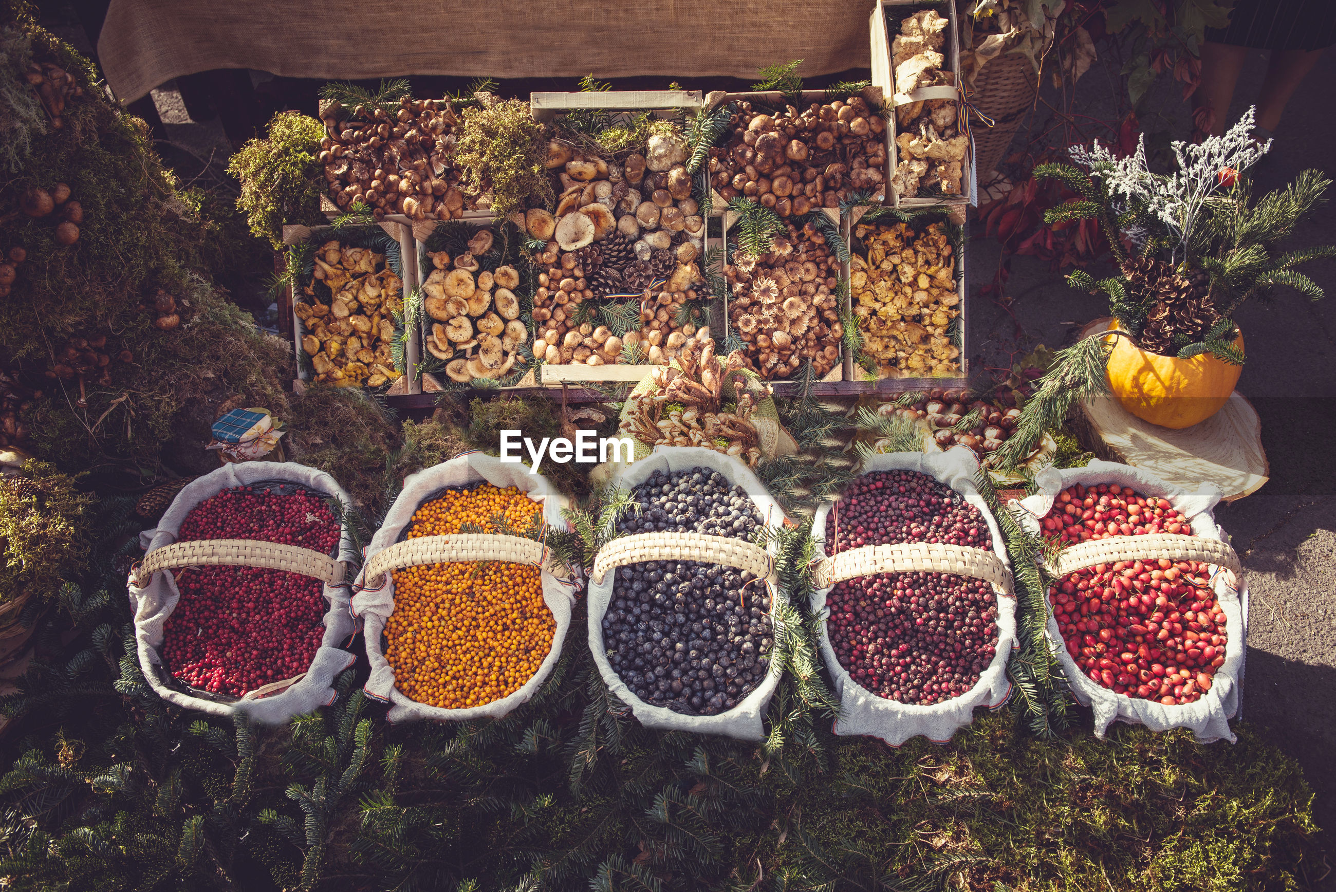 High angle view of food for sale at market stall