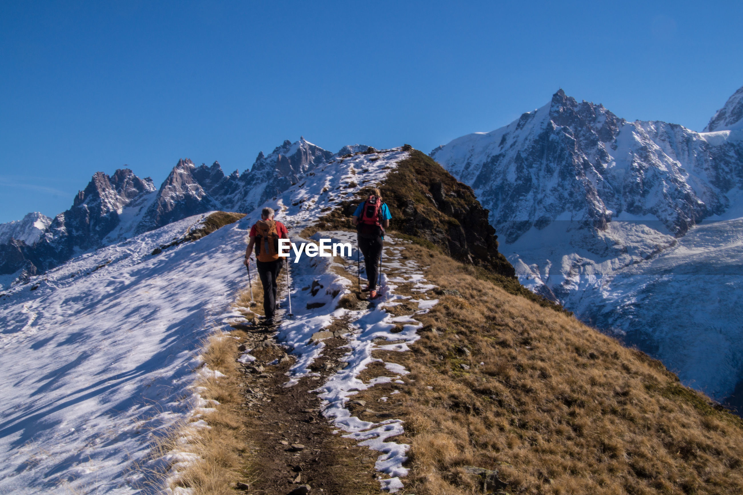Rear view of hikers climbing snow covered mountains against clear blue sky