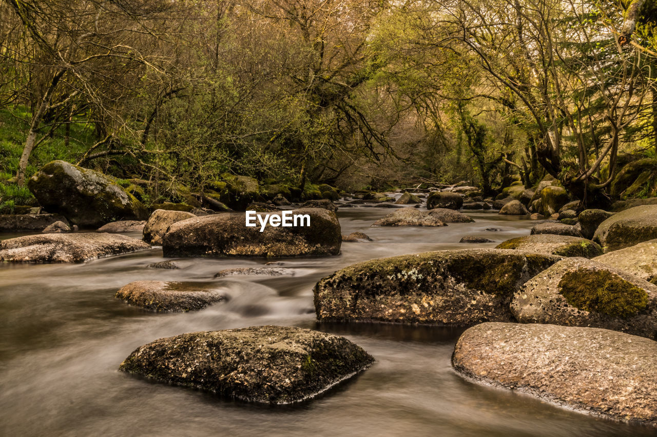 water, rock - object, nature, tree, no people, outdoors, scenics, beauty in nature, waterfall, day