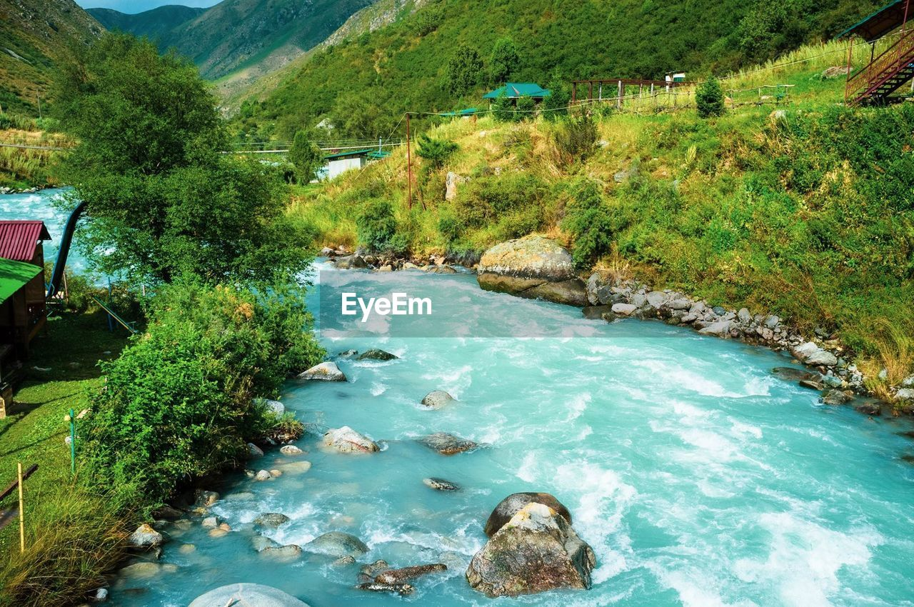 water, plant, tree, scenics - nature, nature, day, beauty in nature, tranquil scene, no people, tranquility, river, green color, lush foliage, foliage, land, outdoors, environment, high angle view, flowing water, turquoise colored