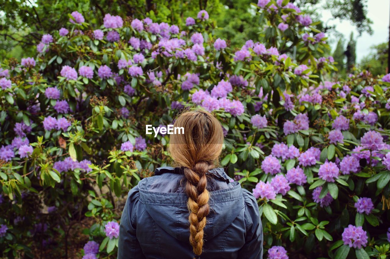 Rear View Of Woman In Braided Hair Standing Against Purple Flowering Plants