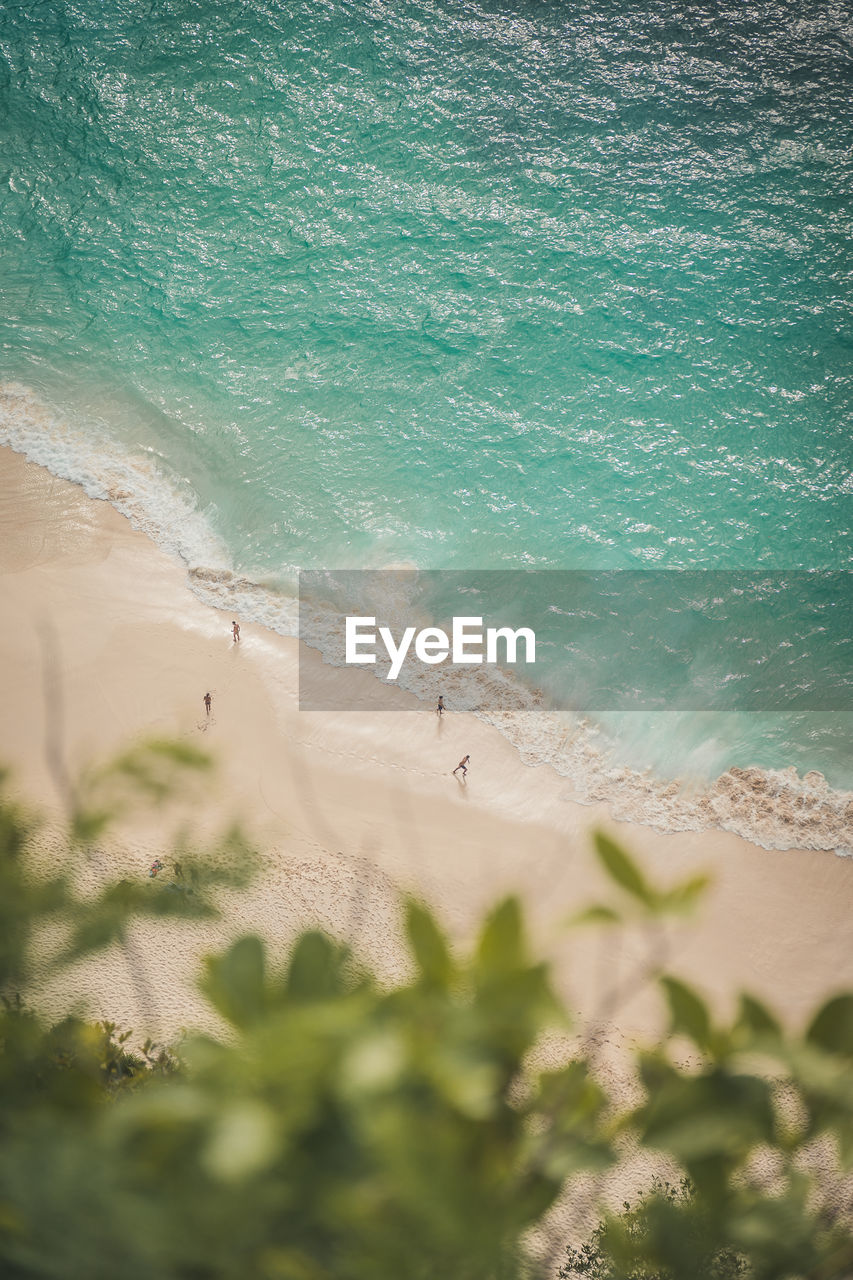 sea, land, beach, water, sand, beauty in nature, wave, nature, motion, scenics - nature, day, high angle view, tranquility, tranquil scene, plant, aquatic sport, surfing, outdoors, power in nature