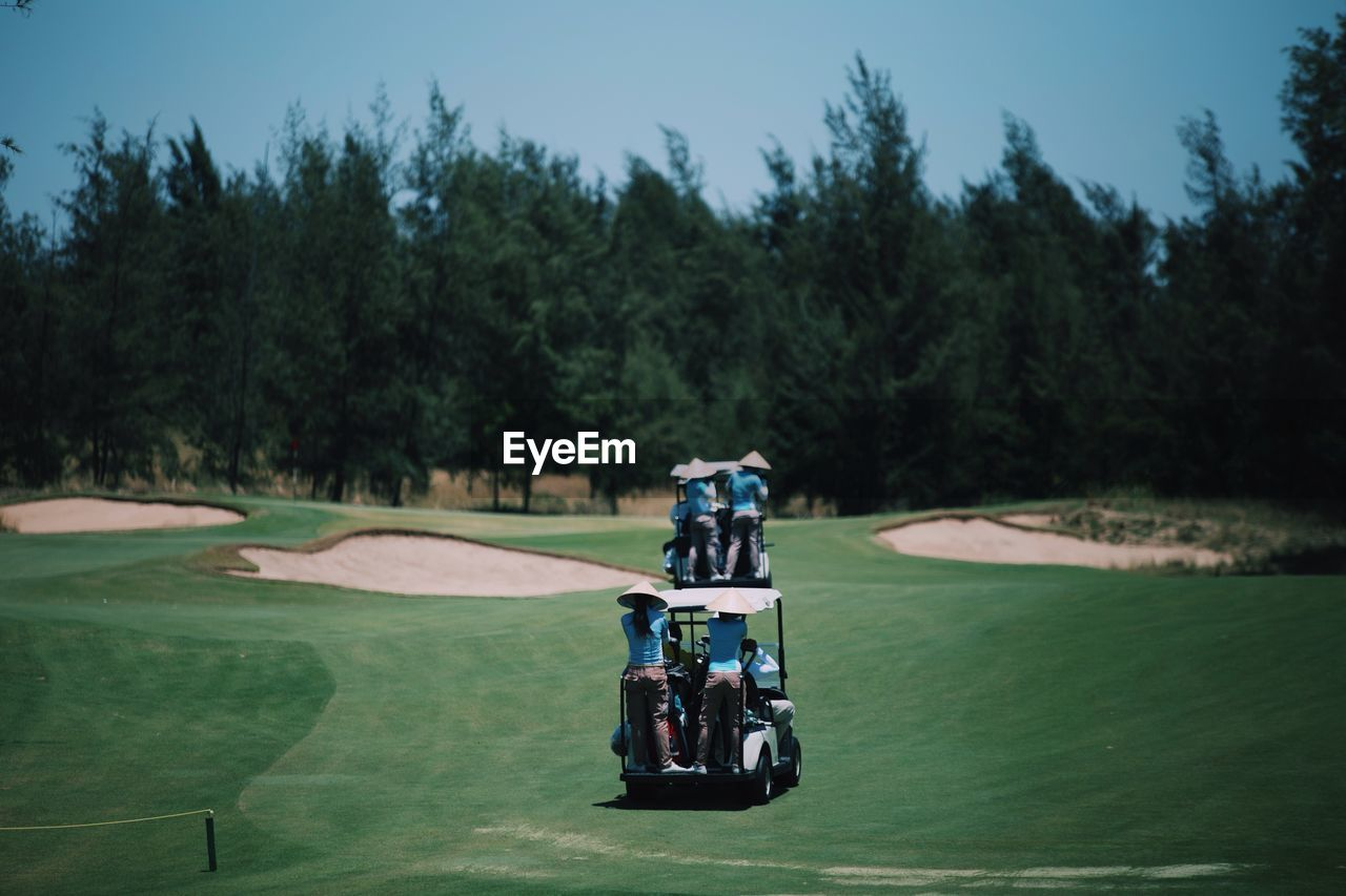 tree, plant, transportation, sport, mode of transportation, golf course, golf, green color, real people, day, nature, land vehicle, leisure activity, grass, activity, green - golf course, one person, land, golf cart, outdoors