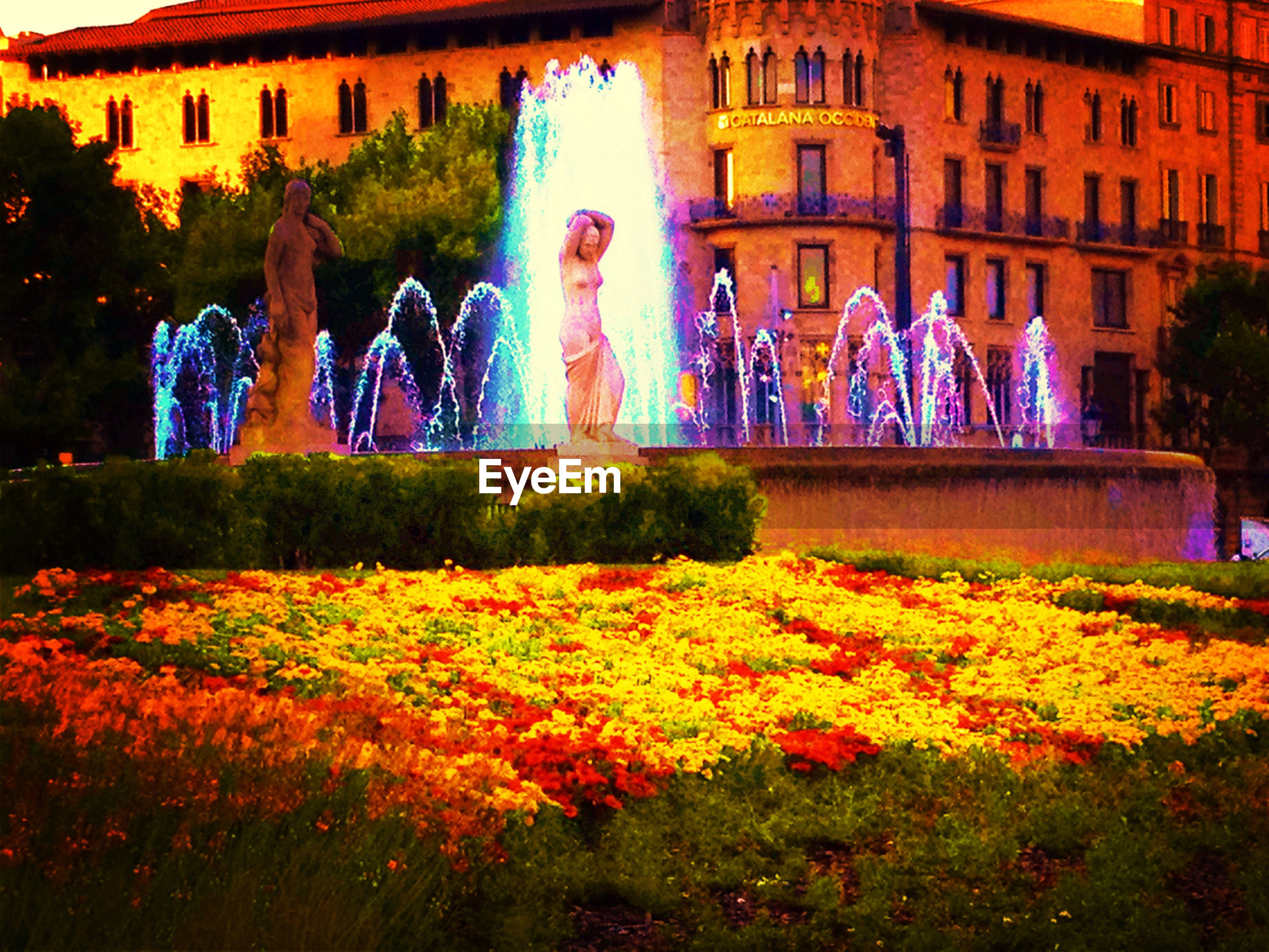 building exterior, built structure, architecture, flower, multi colored, art, art and craft, creativity, plant, tree, building, outdoors, autumn, formal garden, human representation, growth, statue, park - man made space, nature, day