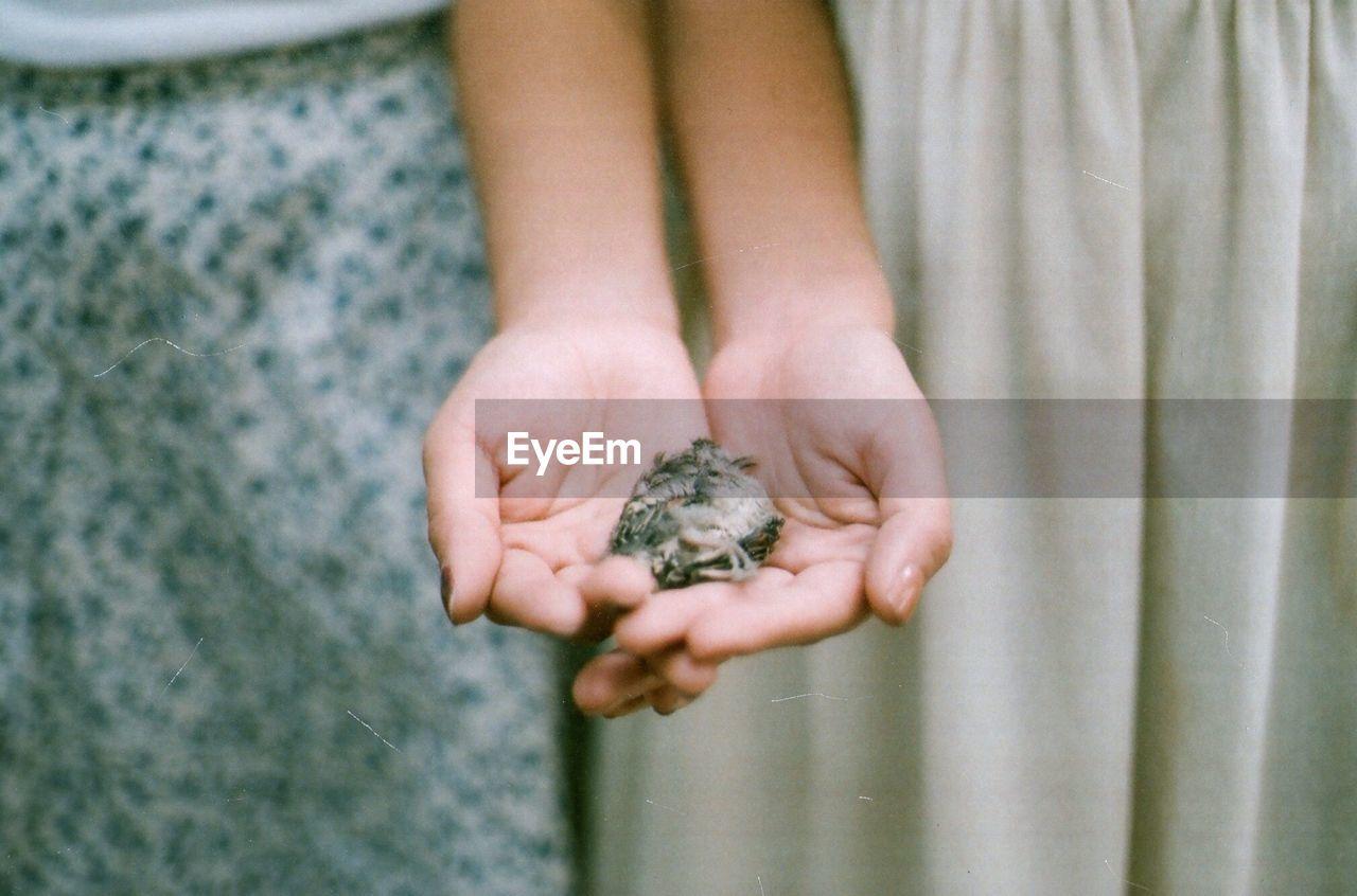 Friends Holding A Dead Bird