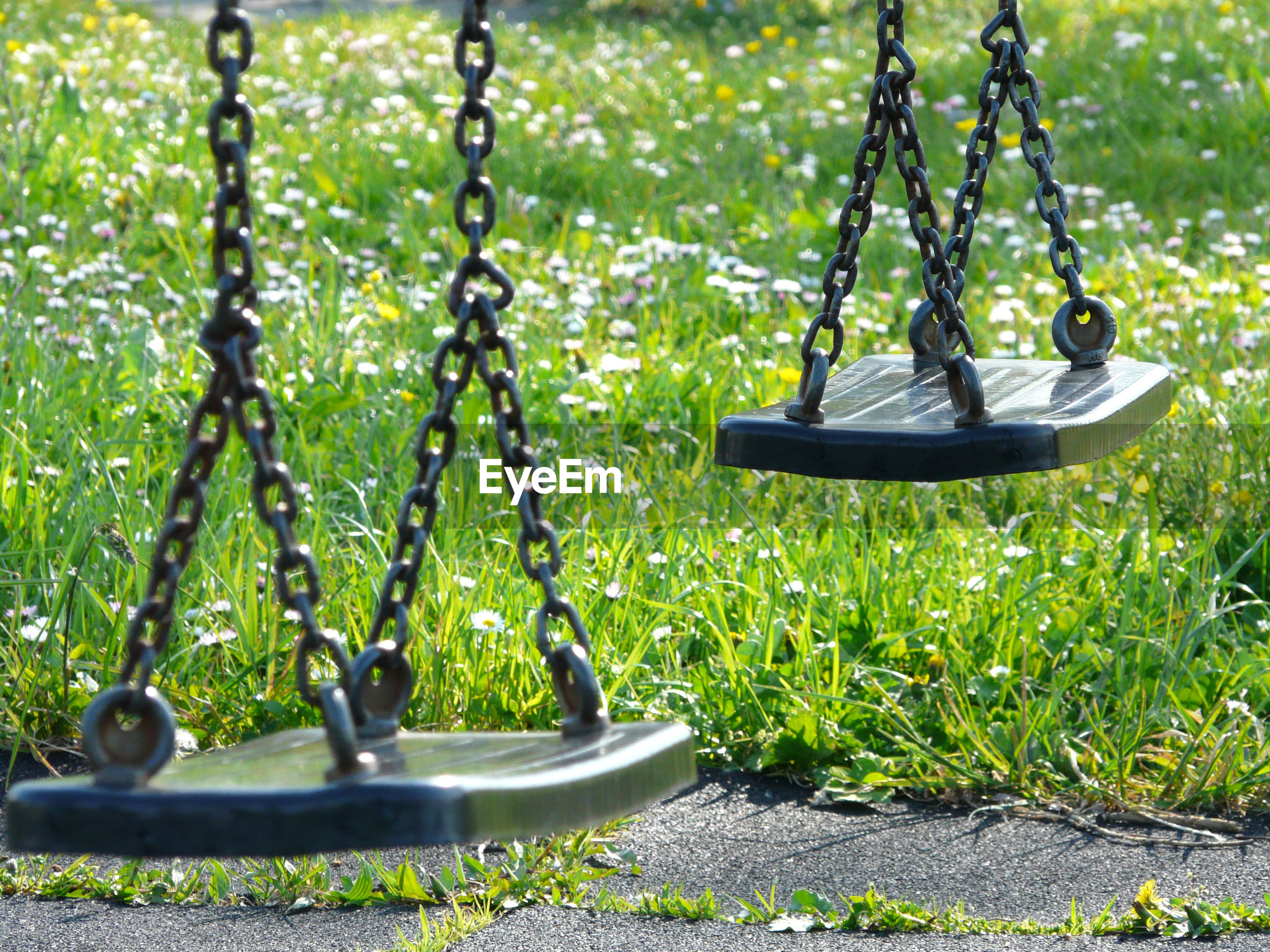 View of swing hanging in park
