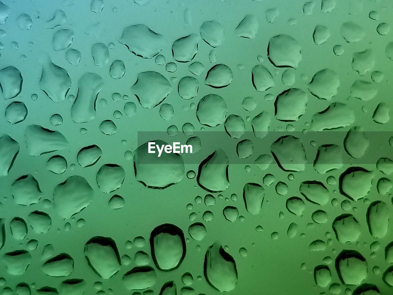 wet, drop, water, rain, full frame, backgrounds, no people, close-up, raindrop, nature, rainy season, green color, transparent, glass - material, indoors, monsoon, day, pattern, purity, dew