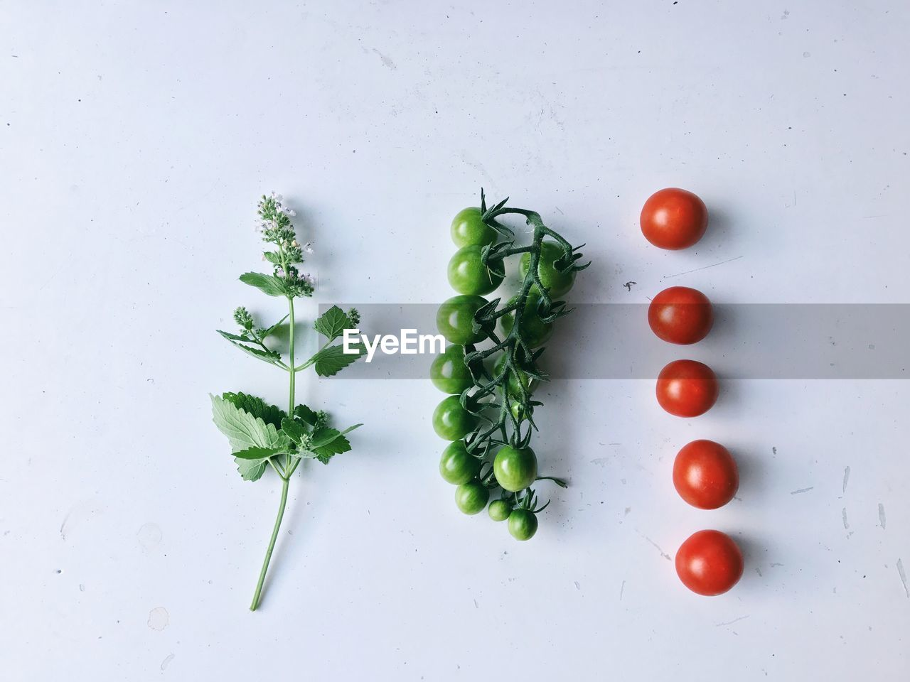 vegetable, food and drink, food, tomato, freshness, wellbeing, healthy eating, green color, indoors, directly above, no people, still life, fruit, red, cherry tomato, raw food, herb, white color, studio shot, close-up, vegetarian food