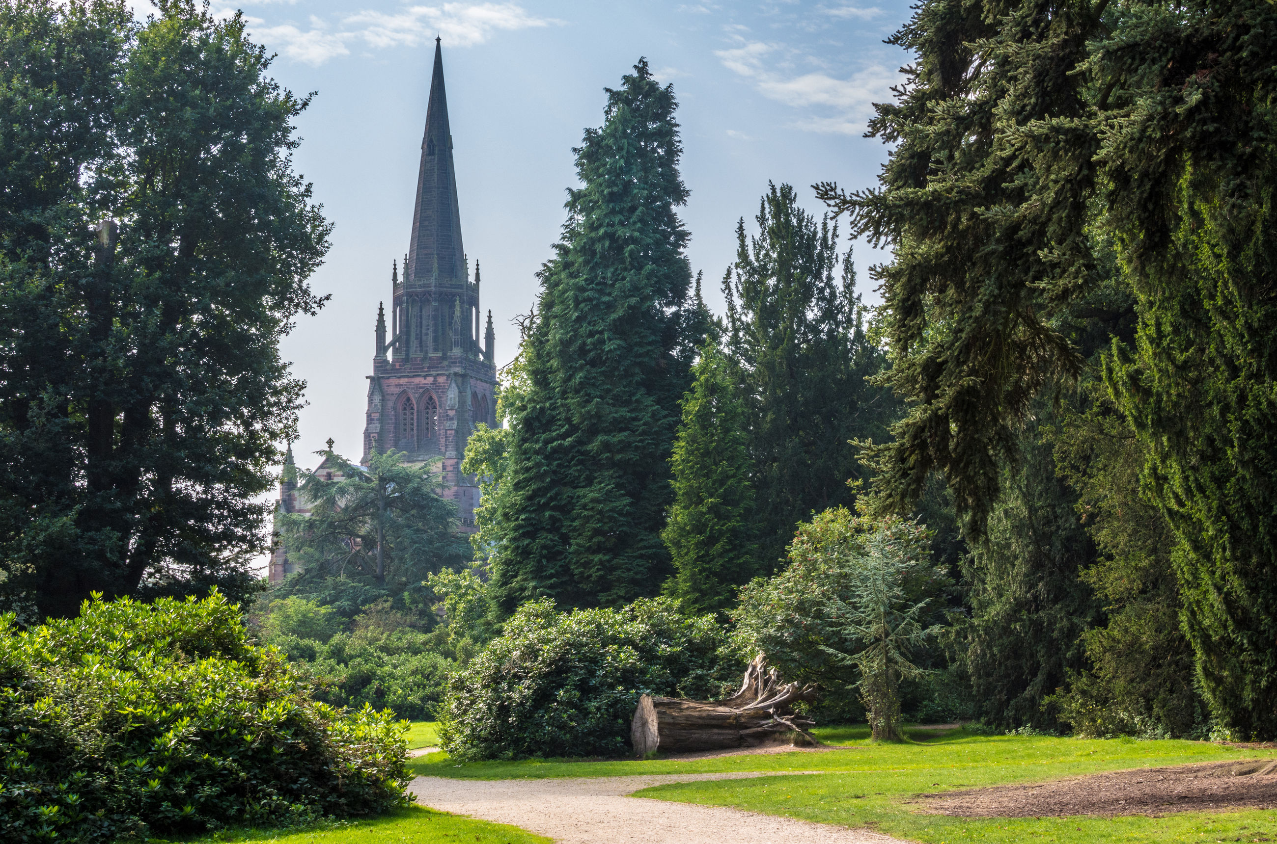 Trees growing at park against historic church