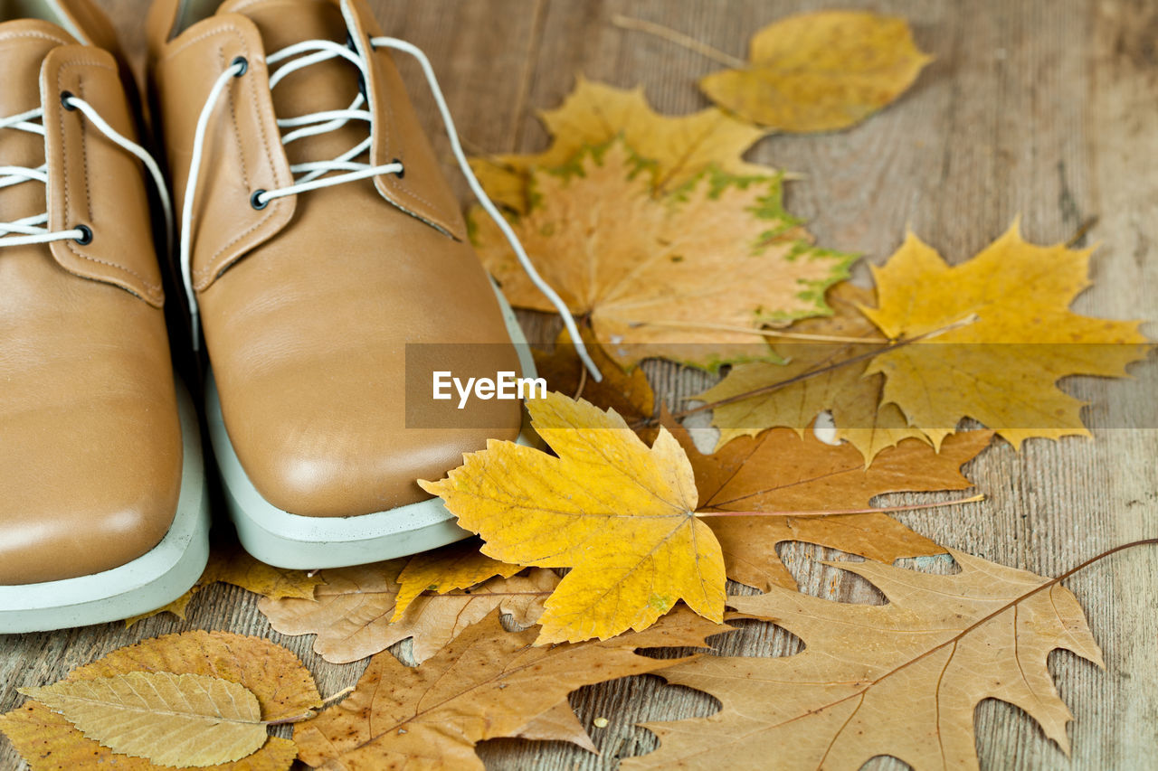 plant part, leaf, high angle view, autumn, still life, yellow, close-up, maple leaf, table, change, no people, wood - material, indoors, nature, leaves, day, directly above, brown