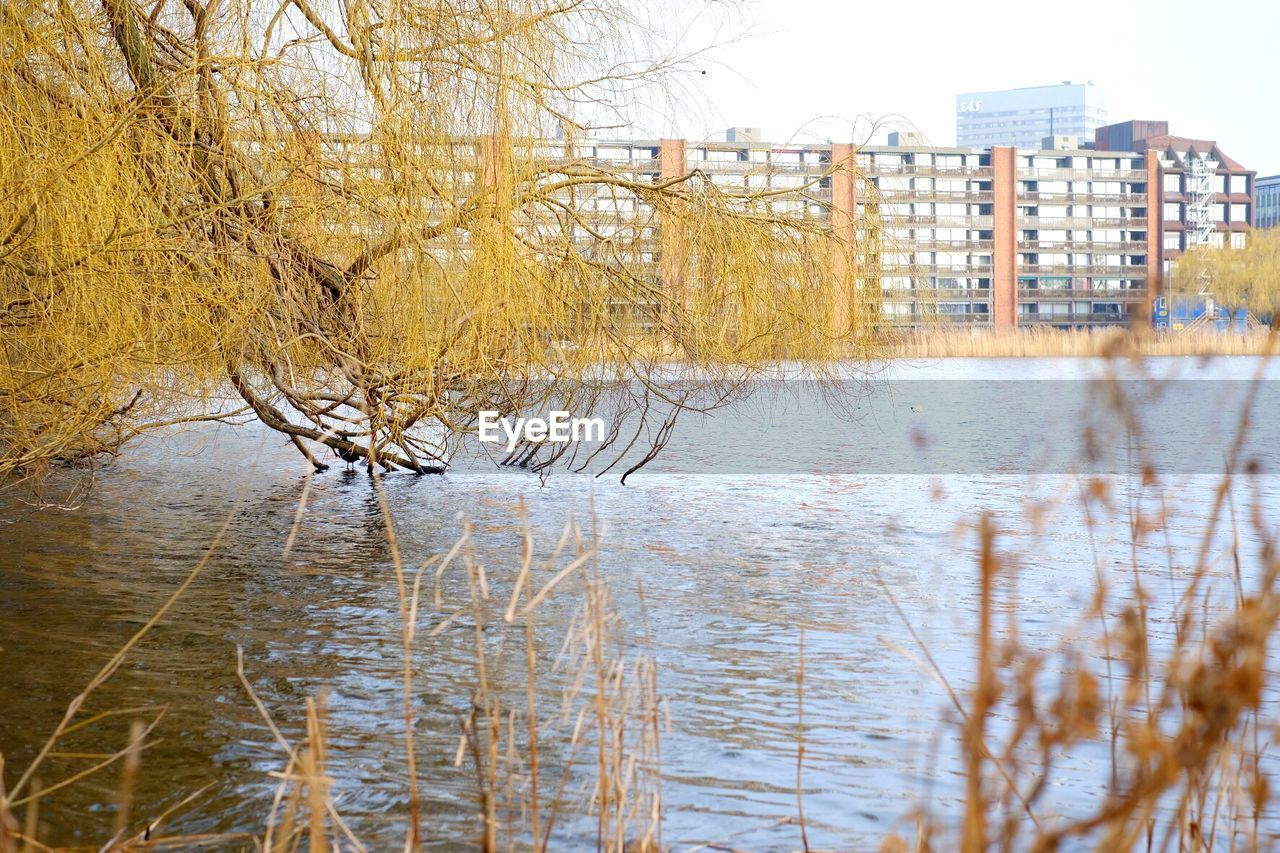 bare tree, winter, architecture, building exterior, water, cold temperature, outdoors, river, built structure, city, no people, snow, tree, nature, day, branch, sky, beauty in nature