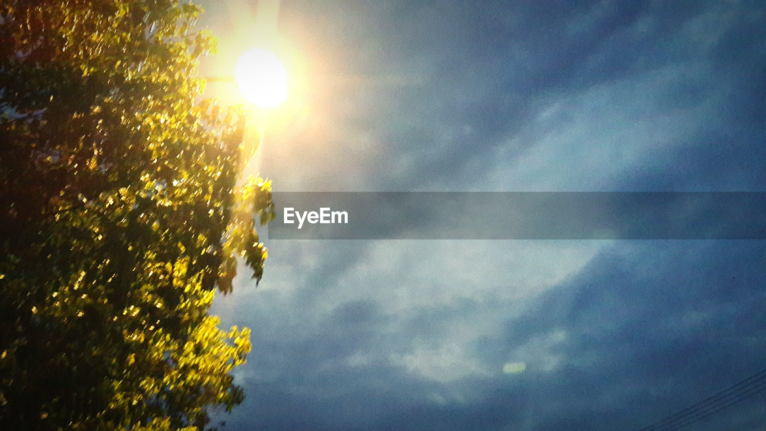 sun, sky, sunbeam, beauty in nature, sunlight, nature, sunset, cloud - sky, no people, low angle view, tree, scenics, outdoors, tranquility, day
