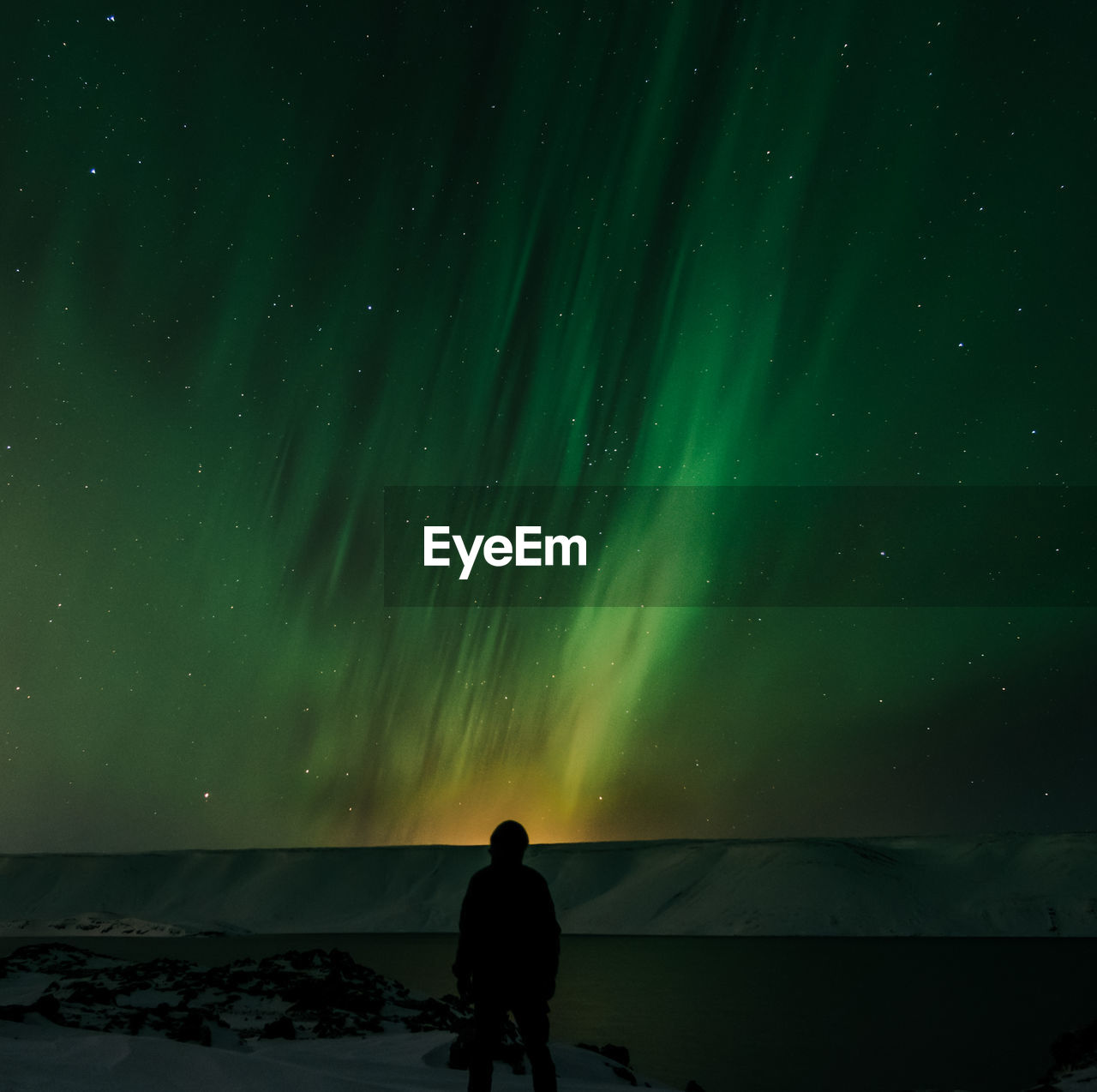 Rear view of silhouette man standing against aurora borealis at night during winter