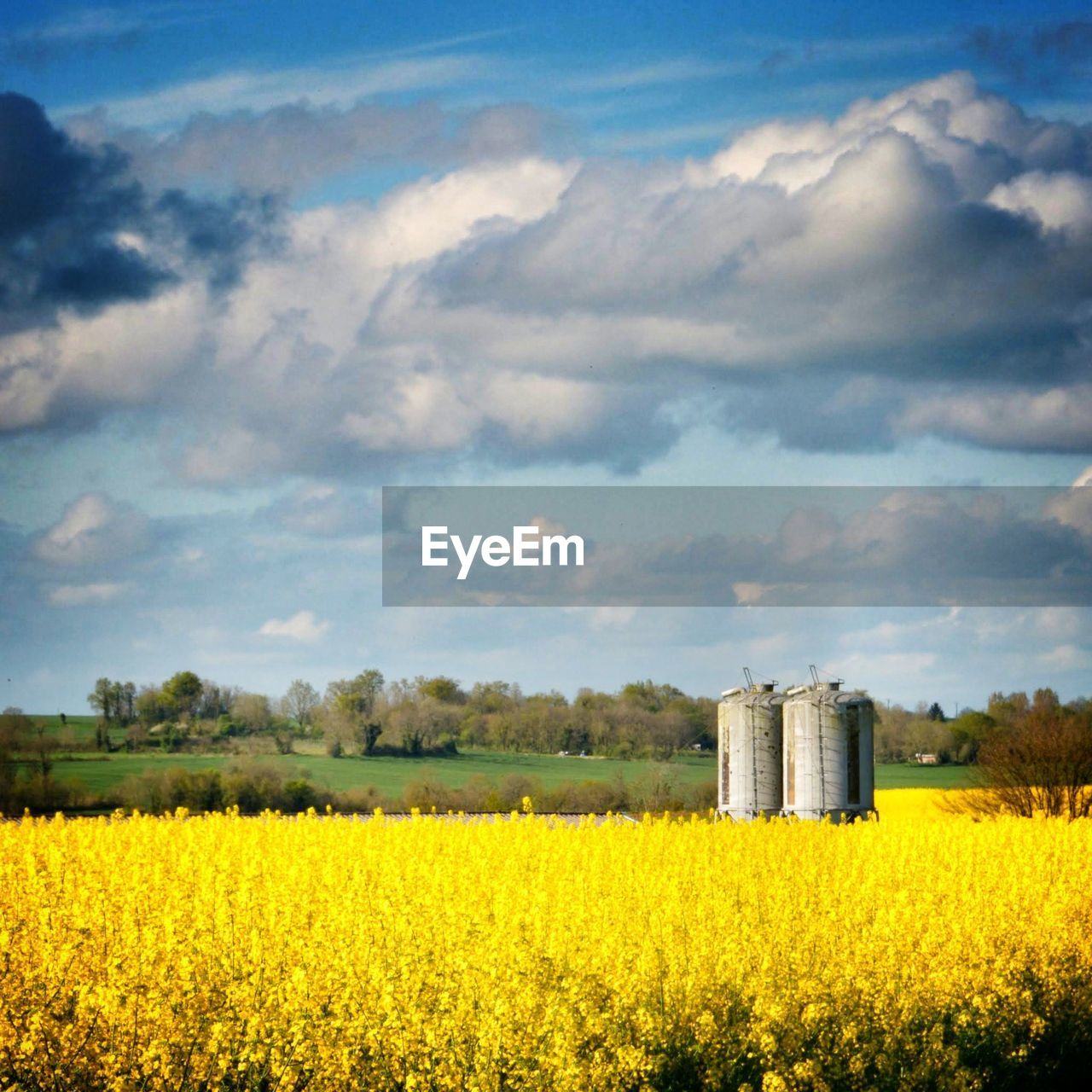 Silo on oilseed rape field against cloudy sky