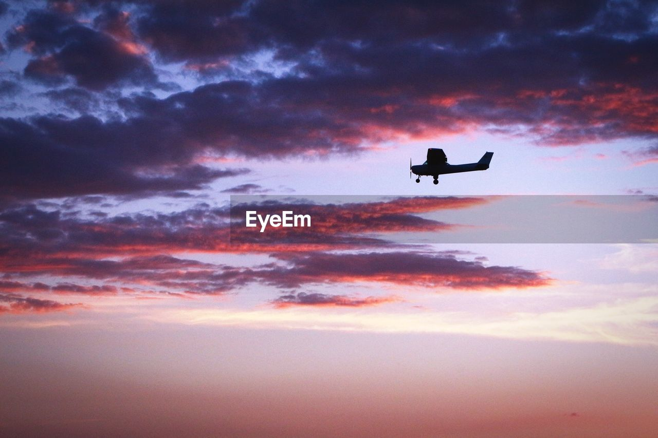 cloud - sky, sky, sunset, flying, air vehicle, silhouette, airplane, beauty in nature, scenics - nature, orange color, mid-air, low angle view, nature, no people, mode of transportation, vertebrate, bird, transportation, one animal, animal, outdoors, plane