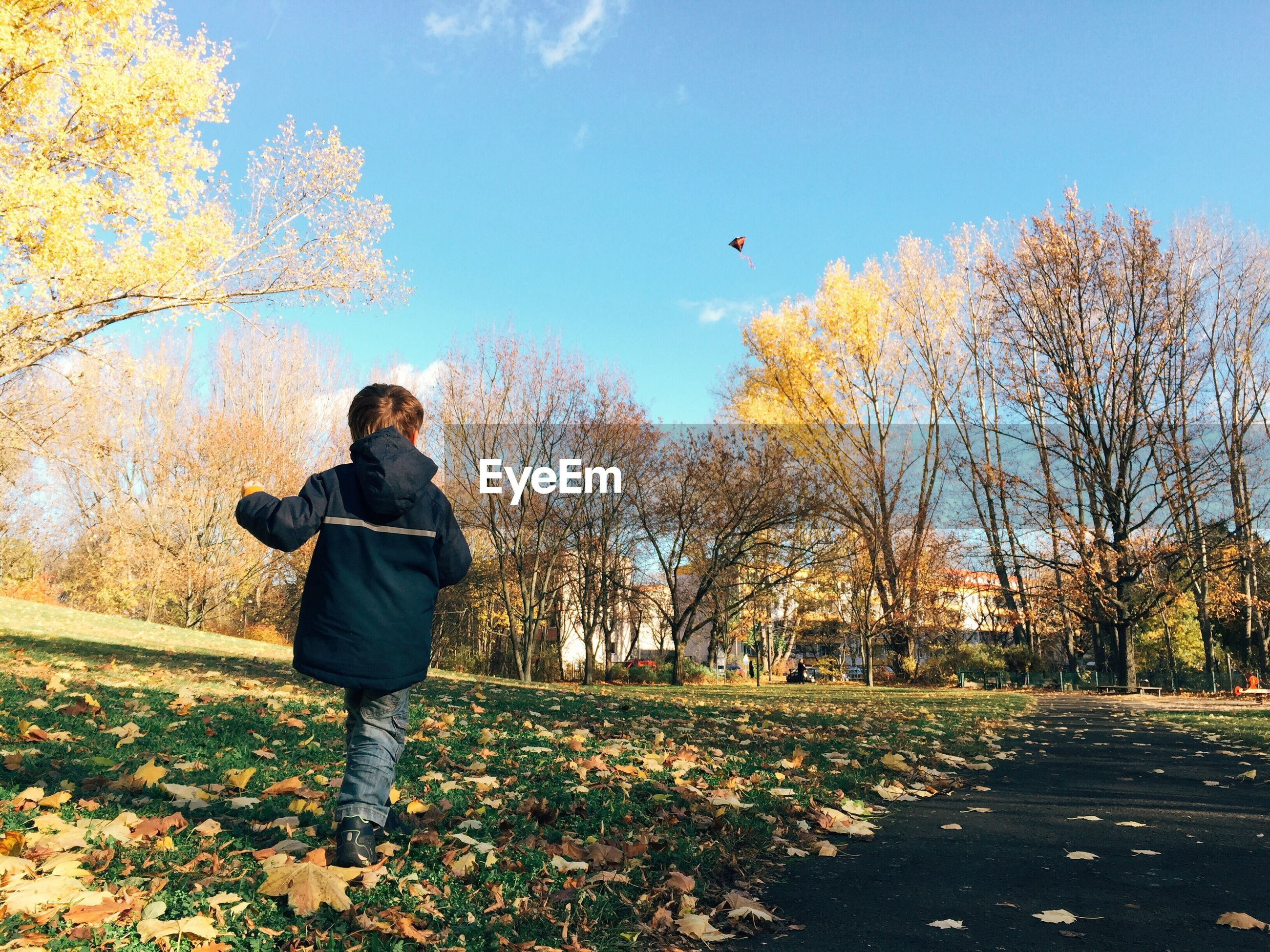 Rear view of boy flying kite on field during autumn