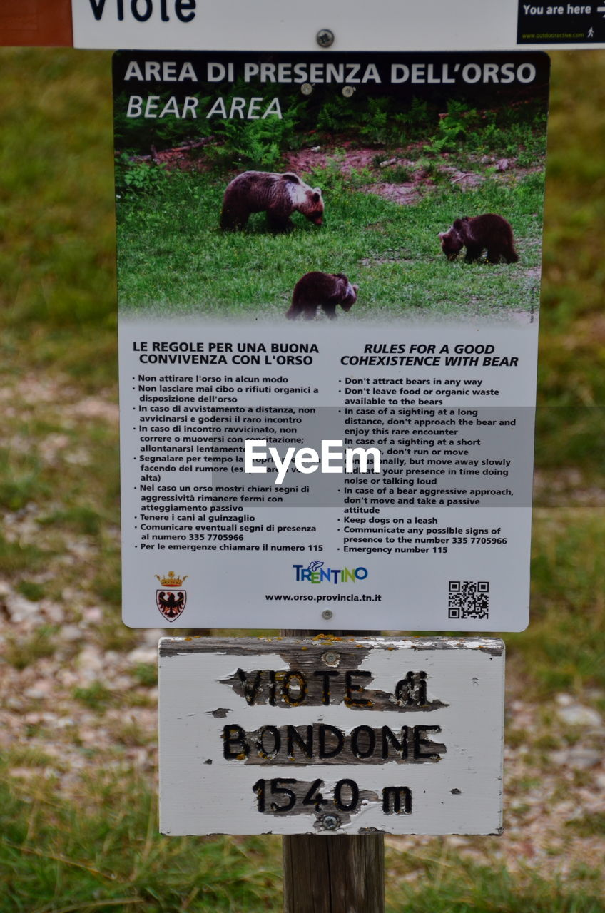 text, western script, communication, close-up, no people, animal themes, outdoors, day, grass, animals in the wild, placard, mammal