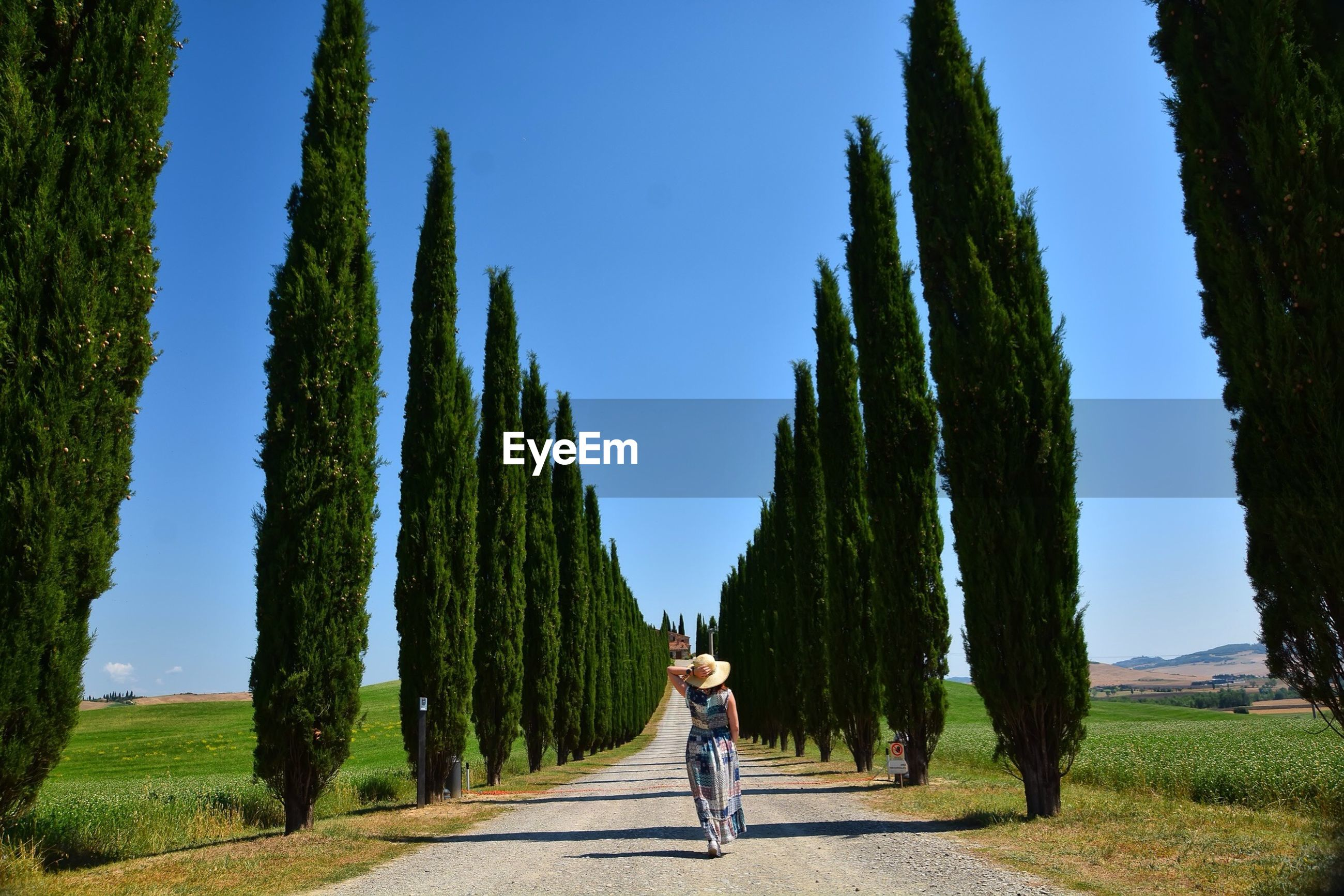Woman walking amidst trees against clear sky