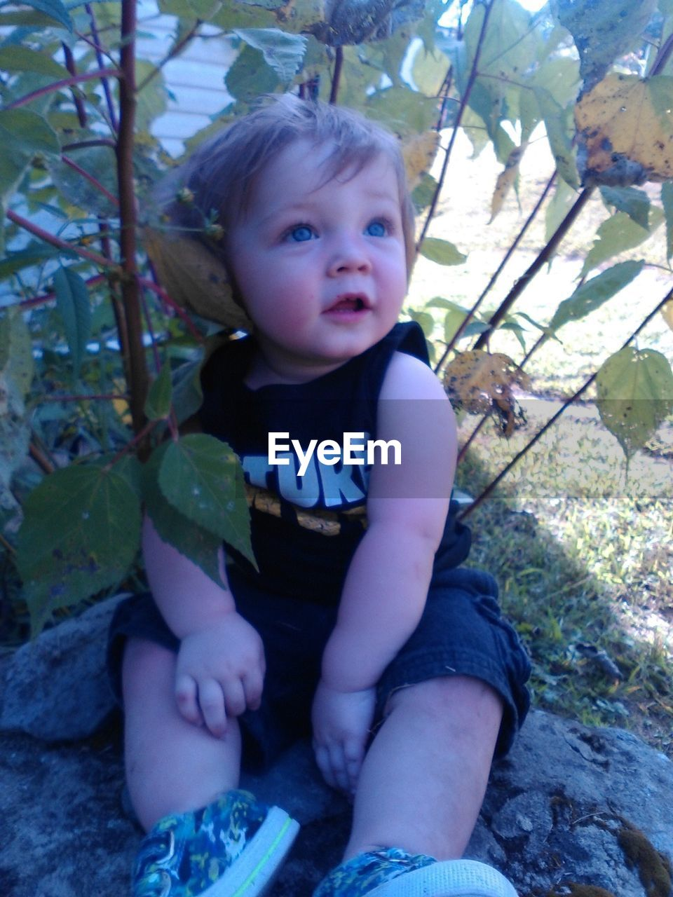 High Angle View Of Baby Looking Up While Sitting By Plant On Field