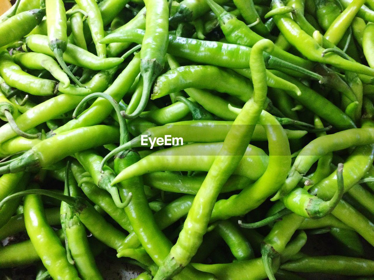FULL FRAME SHOT OF FRESH GREEN VEGETABLES