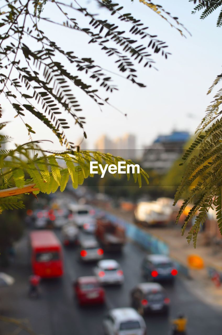 mode of transportation, car, motor vehicle, transportation, land vehicle, street, city, road, nature, plant, no people, day, text, selective focus, focus on foreground, outdoors, sky, traffic, close-up, tree