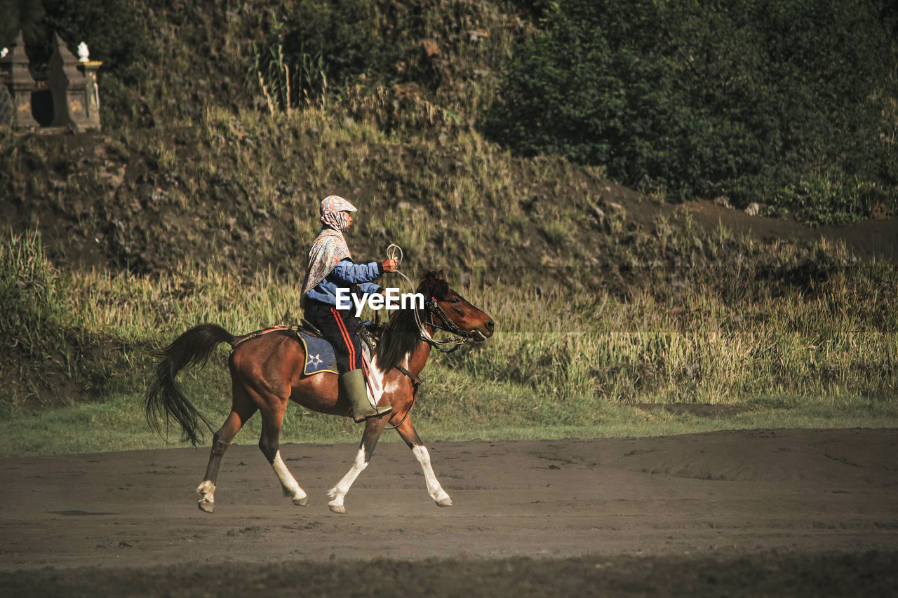 WOMAN RIDING HORSE ON LAND