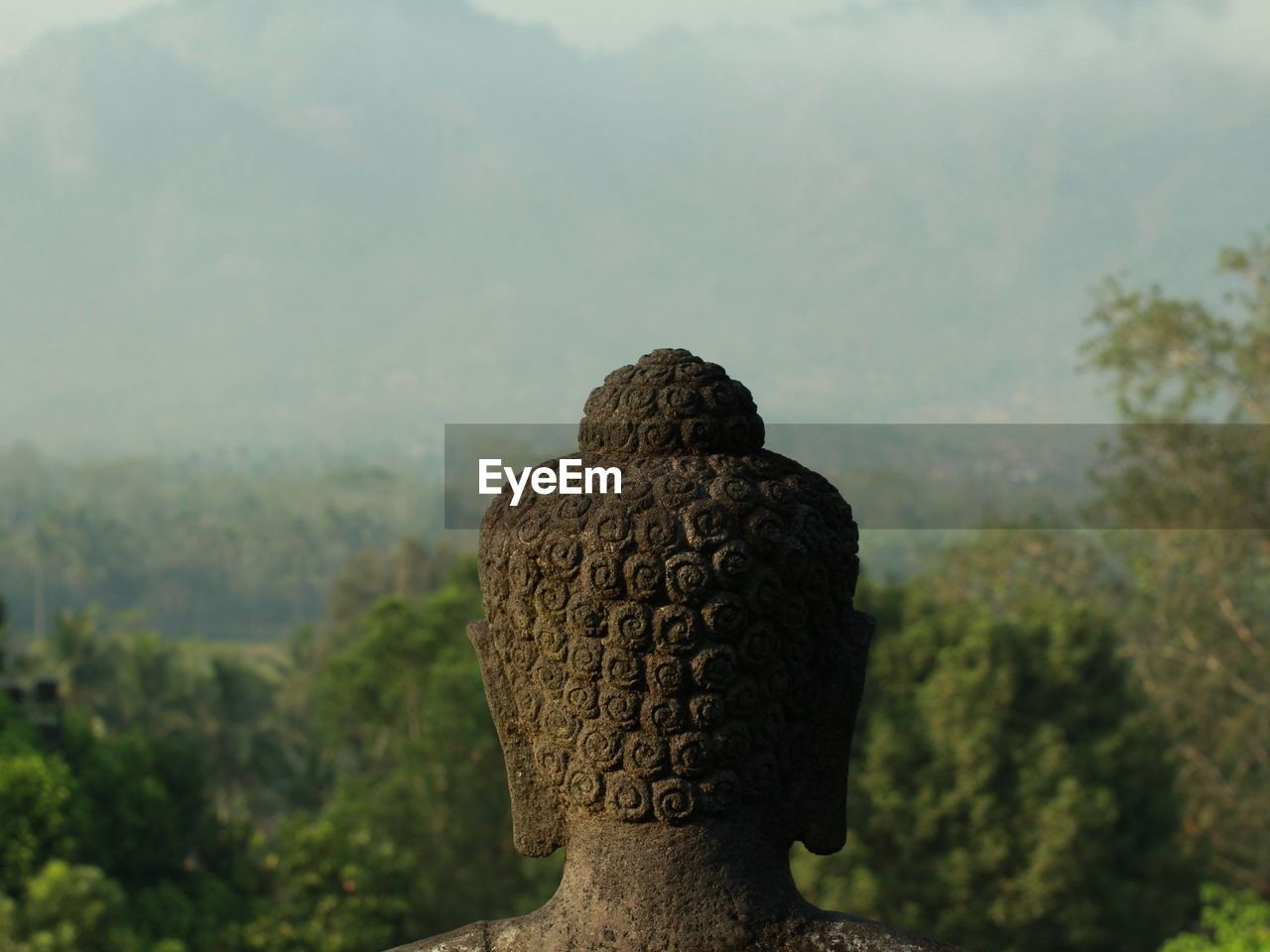 Close-Up Of Buddha Statue Against Plants