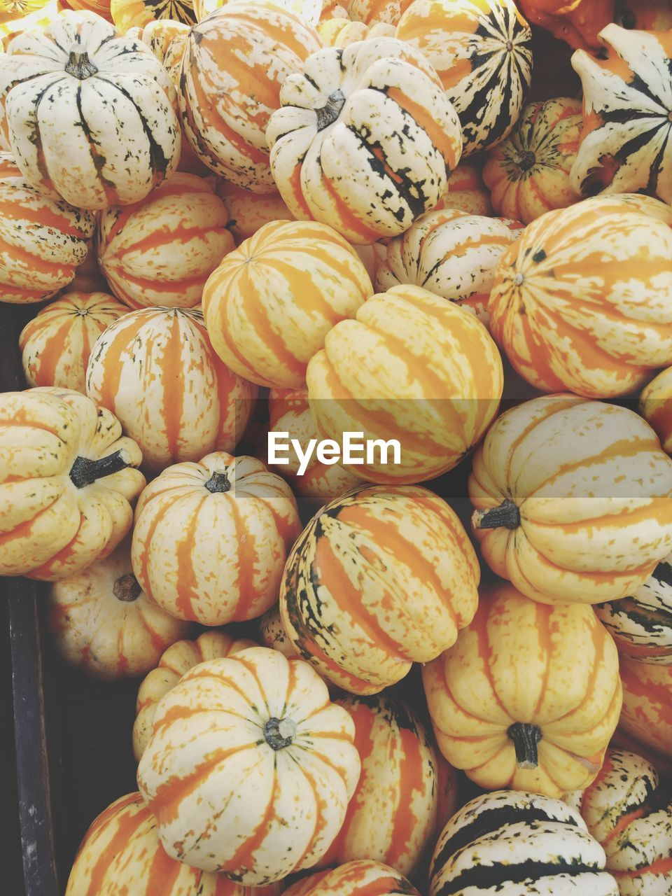 Full Frame Shot Of Pumpkins At Market