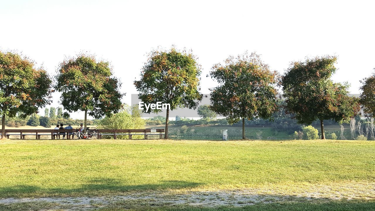 tree, grass, playing field, field, park - man made space, day, no people, playground, growth, green color, sport, outdoors, nature, tranquility, outdoor play equipment, beauty in nature, soccer field, clear sky, sky, goal post
