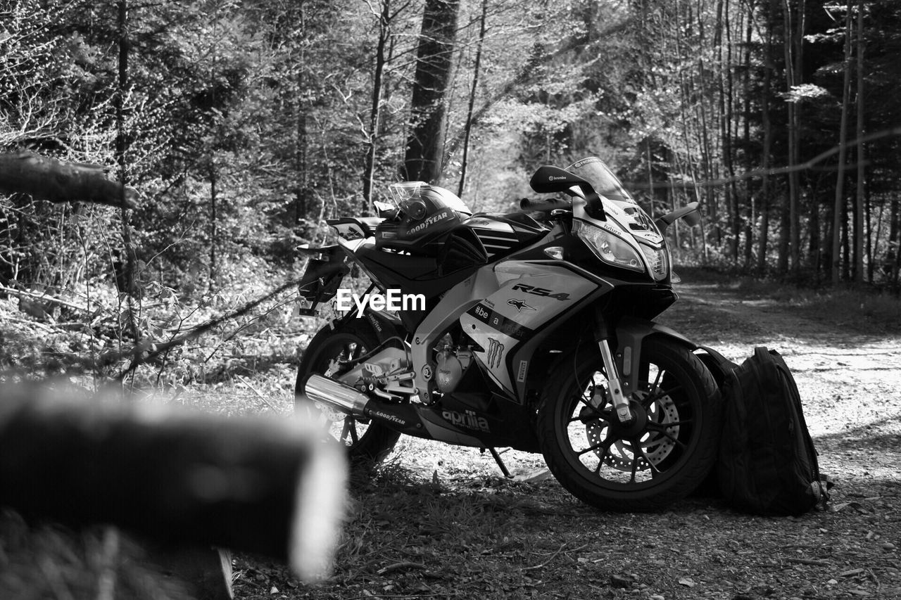 motorcycle, men, real people, two people, transportation, tree, day, crash helmet, lifestyles, riding, land vehicle, leisure activity, adventure, forest, togetherness, outdoors, nature, biker, motocross, people