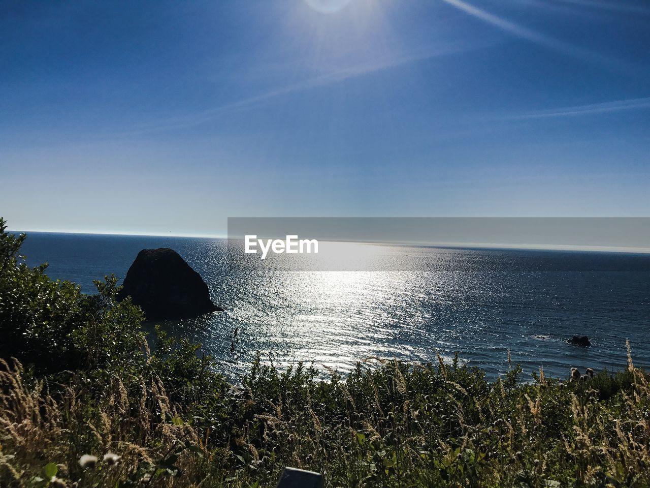 sea, water, scenics - nature, sky, horizon, horizon over water, beauty in nature, tranquility, tranquil scene, sunlight, plant, nature, day, land, no people, beach, idyllic, non-urban scene, sun, outdoors, lens flare