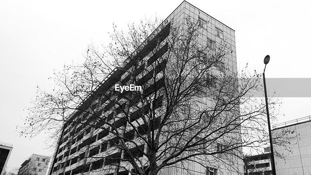 architecture, built structure, building exterior, bare tree, low angle view, sky, day, city, tree, outdoors, skyscraper, modern, no people