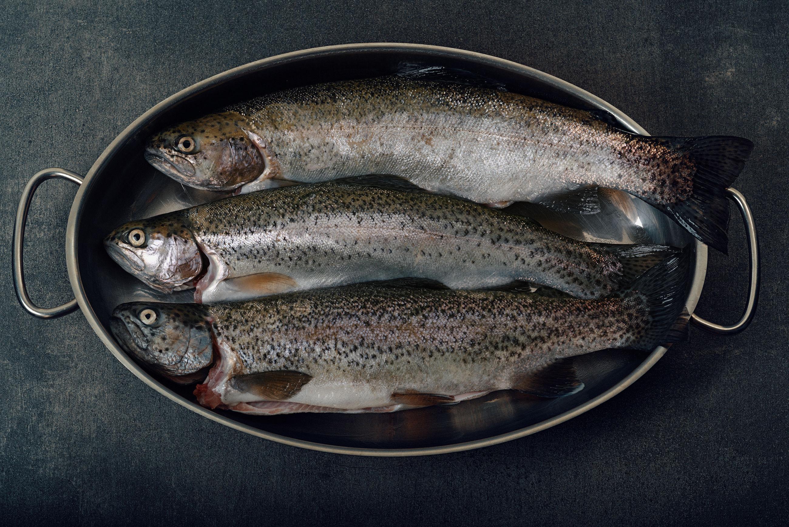 Three fish in a pan