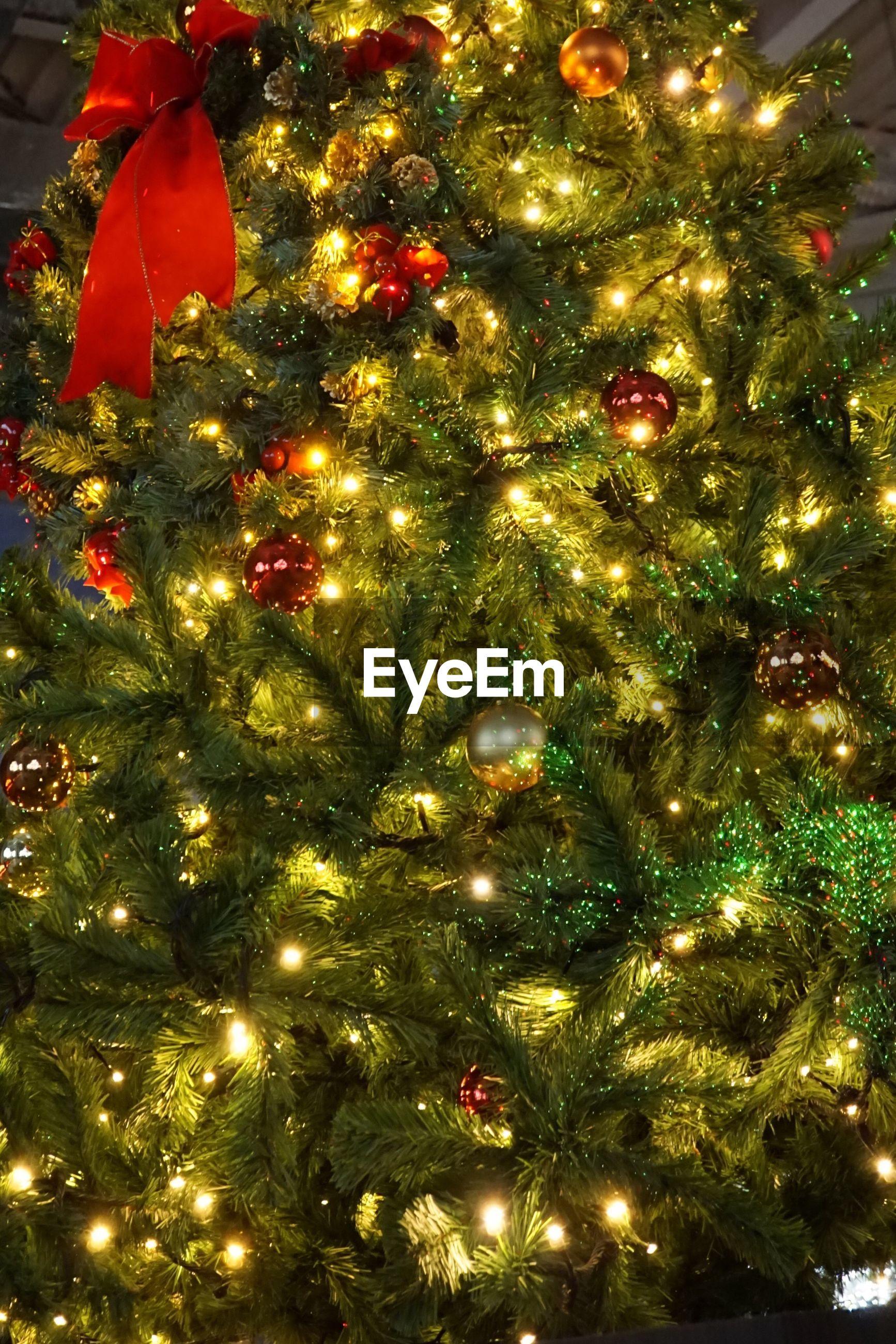 christmas, celebration, holiday, decoration, christmas tree, christmas decoration, illuminated, christmas lights, christmas ornament, tree, no people, celebration event, lighting equipment, holiday - event, full frame, indoors, event, close-up, light