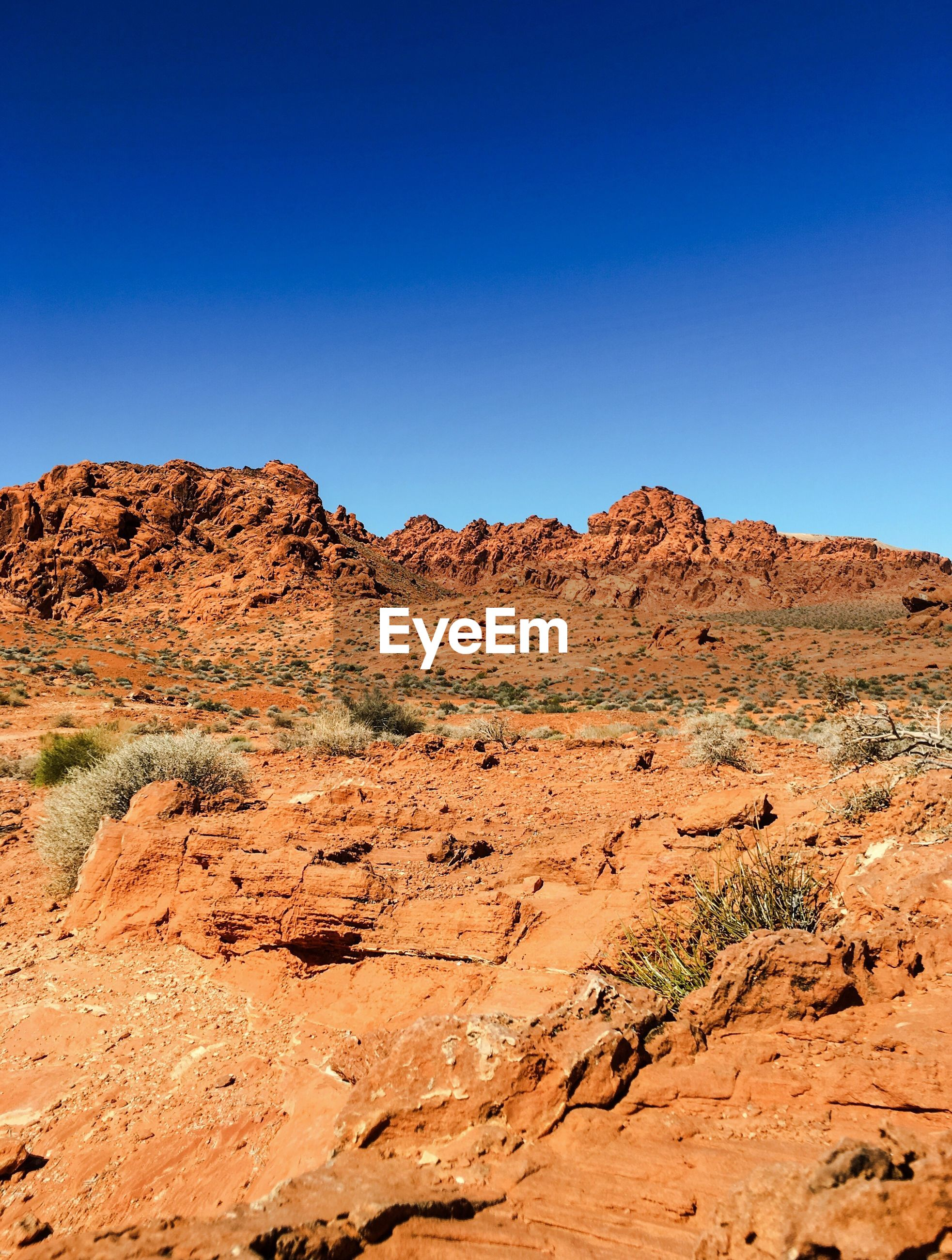 Scenic view of landscape by mountain against blue sky