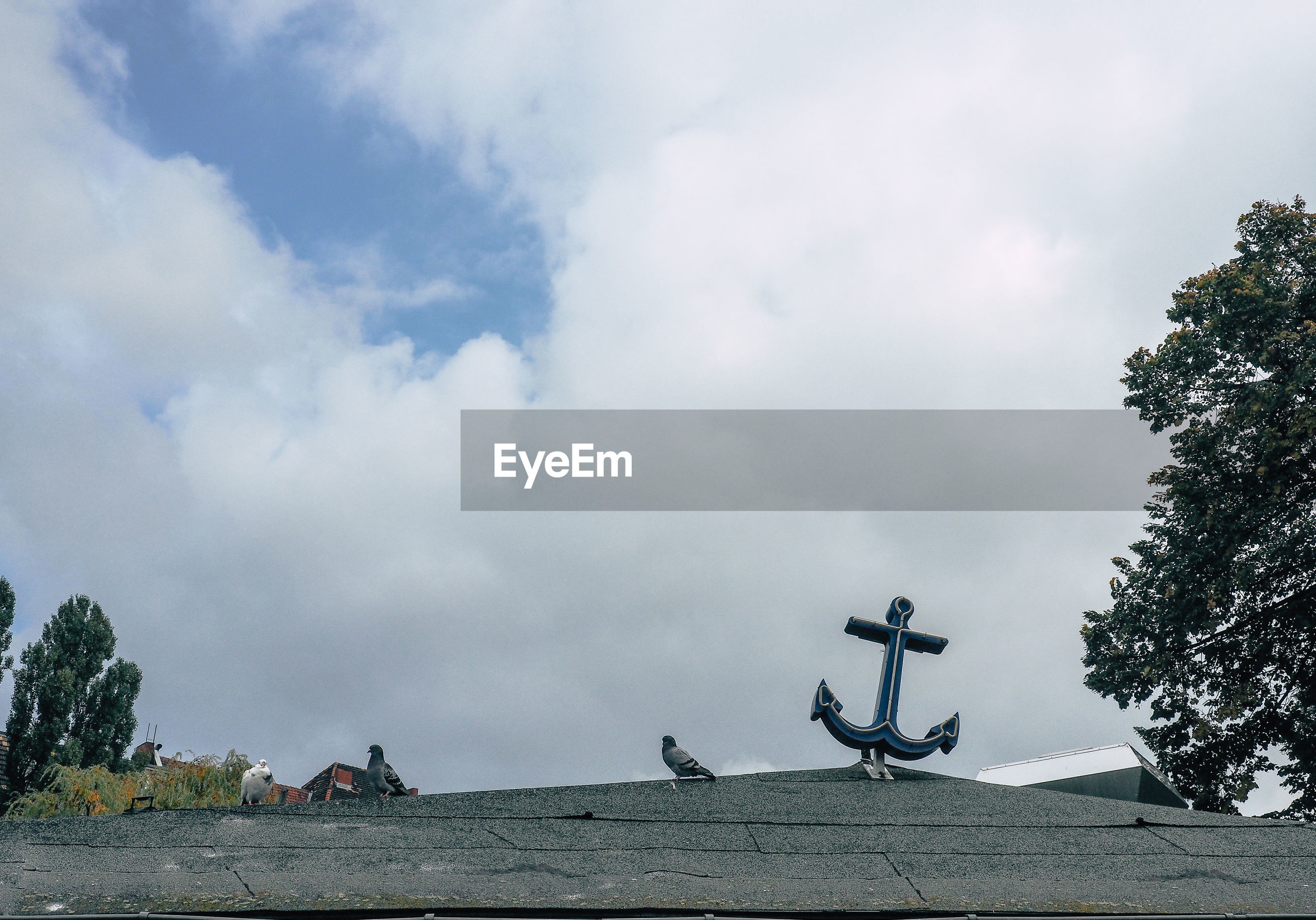 Low angle view of pigeons perching by anchor sculpture on roof against sky