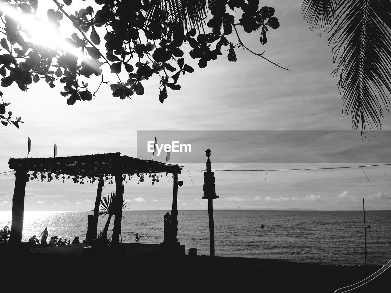 sea, water, horizon over water, sky, nature, beach, beauty in nature, scenics, silhouette, tree, outdoors, tranquility, day, palm tree, no people