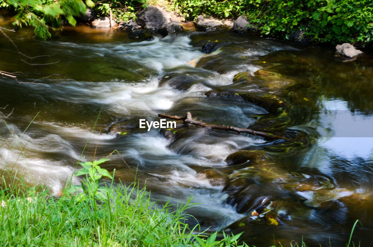 water, motion, blurred motion, nature, river, no people, long exposure, outdoors, waterfall, beauty in nature, day, grass, riverbank, animal themes, mammal