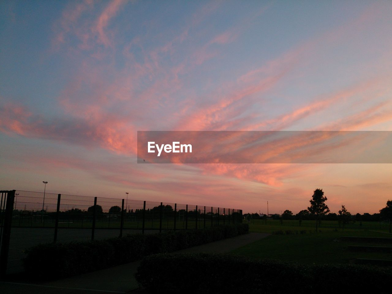 sunset, tranquility, tranquil scene, beauty in nature, agriculture, landscape, scenics, field, nature, rural scene, sky, tree, outdoors, no people, cloud - sky, growth, day