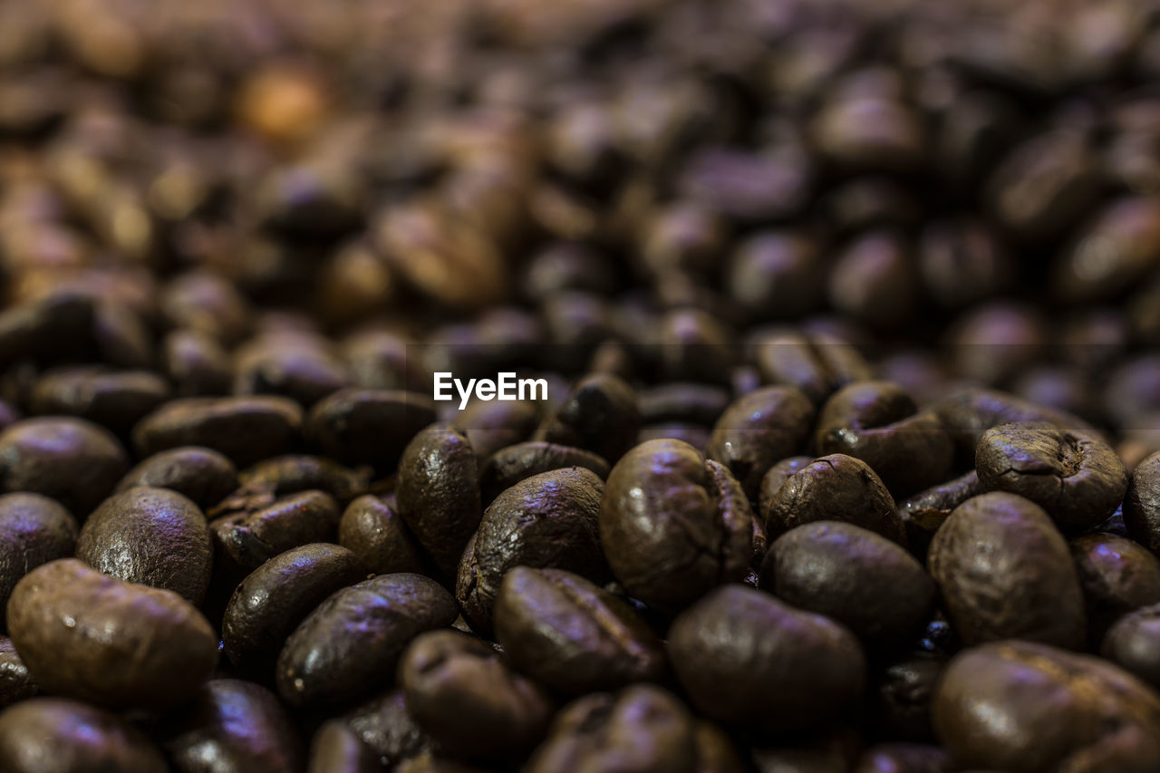 food and drink, no people, backgrounds, freshness, healthy eating, abundance, large group of objects, food, coffee bean, close-up, full frame, indoors, raw coffee bean, nature, day