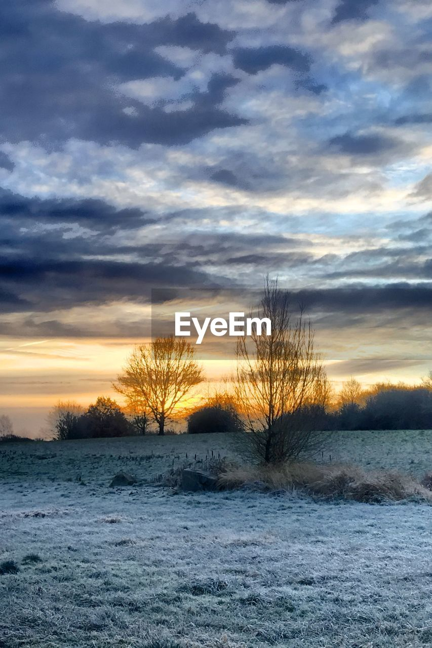 sky, cloud - sky, sunset, beauty in nature, scenics - nature, tranquility, winter, tranquil scene, snow, cold temperature, no people, bare tree, nature, tree, environment, non-urban scene, field, landscape, land, outdoors