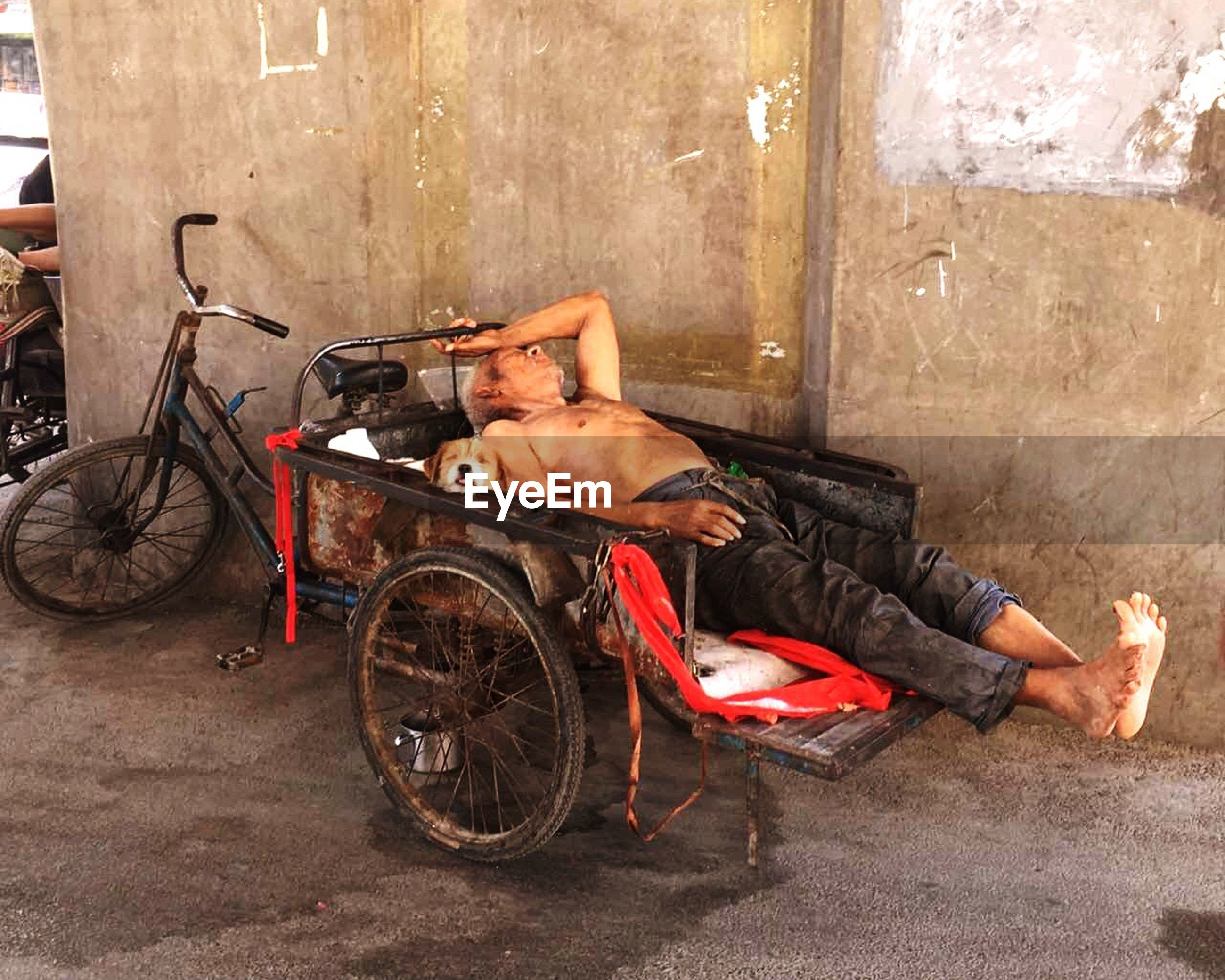 one man only, only men, wheelchair, one person, senior men, one senior man only, men, senior adult, bicycle, sitting, transportation, real people, physical impairment, adults only, outdoors, adult, differing abilities, day, architecture, paralysis, city, people