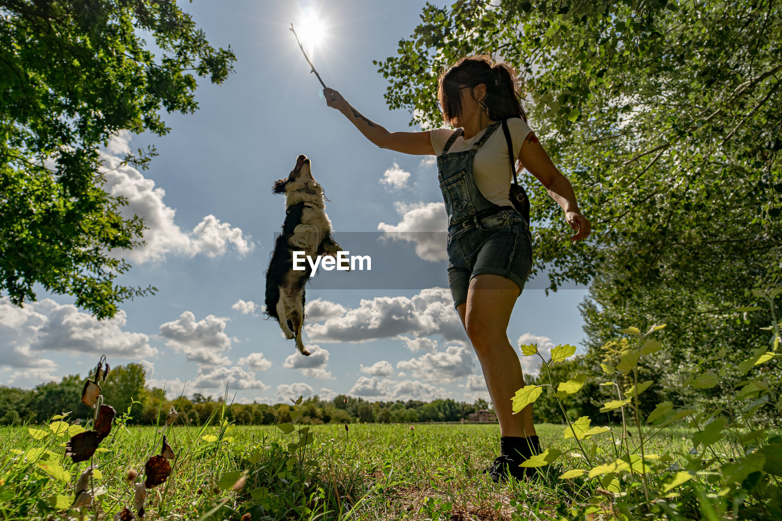 Woman holding stick while playing with dog against trees and sky