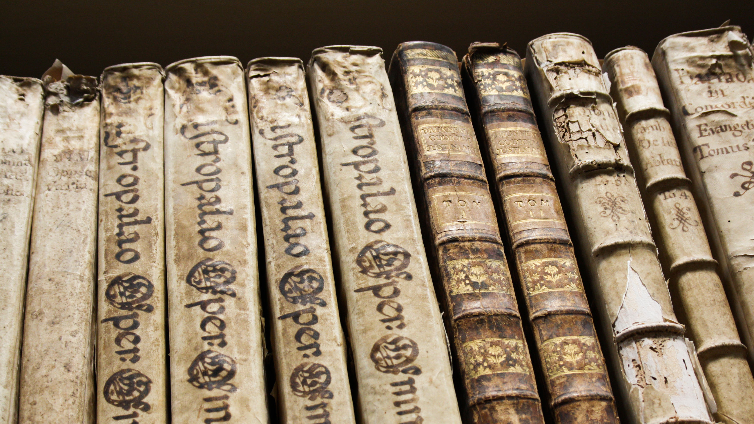 Old book spines