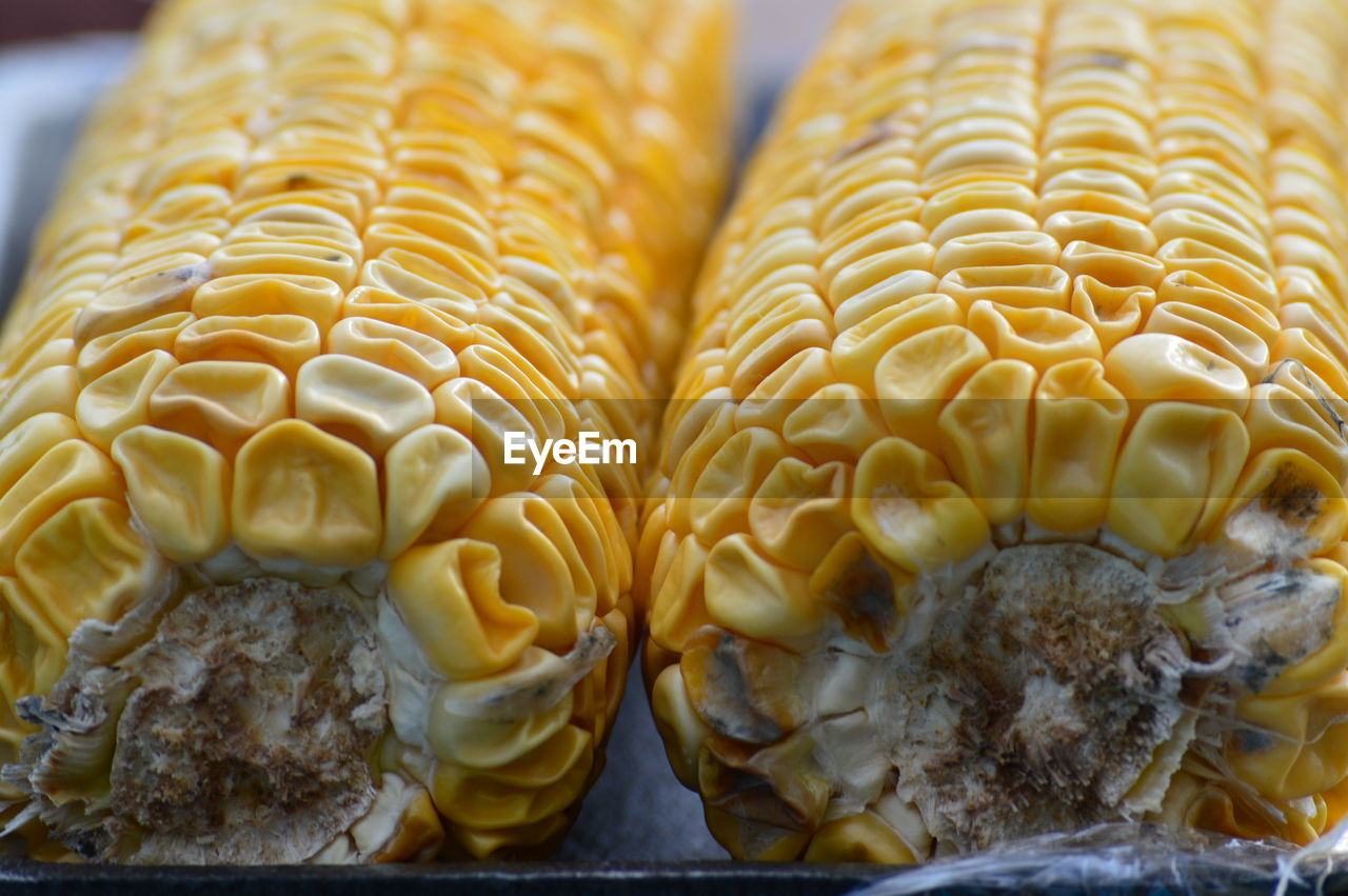 food and drink, food, freshness, close-up, still life, no people, indoors, wellbeing, healthy eating, indulgence, focus on foreground, corn, sweet food, yellow, ready-to-eat, dessert, sweet, temptation, selective focus, pattern, sweetcorn, snack
