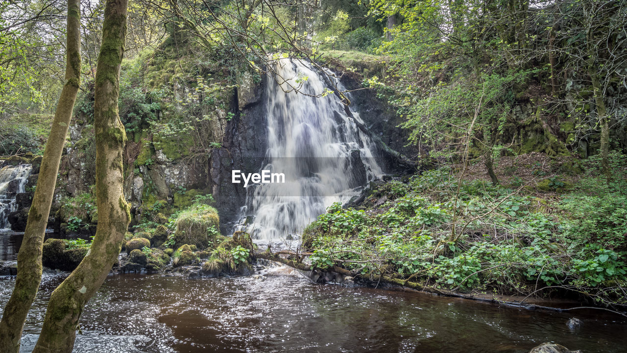 water, forest, tree, plant, motion, land, scenics - nature, waterfall, flowing water, beauty in nature, long exposure, nature, environment, blurred motion, rainforest, solid, rock, no people, day, flowing, outdoors, woodland, stream - flowing water, power in nature, falling water